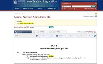 What Future, What Human Race,What Meaning:New Zealand's Animal Welfare Bill?