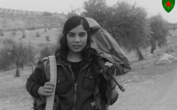 WAR ON AFRIN: Week SixCEASEFIRE IN THE UN SECURITY COUNCIL